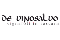 devinosalvo_logo.png